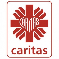 /assets/Uploads/_resampled/CroppedImage236236-logo-caritas-new-cmyk-Copy.jpg